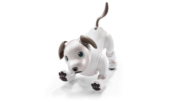 Sony'den Evcil Robot Köpek